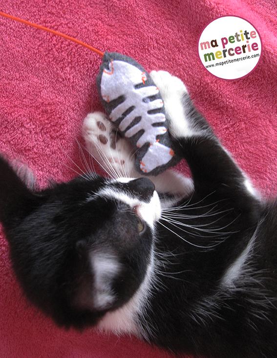diy chat jouet